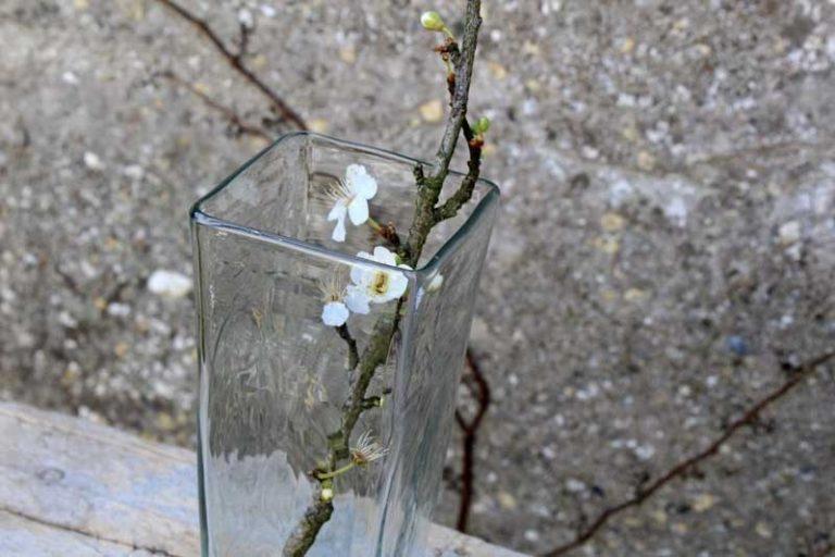 Vase (taille M) transparente soufflé à la bouche en Syrie. Maison d'Alep