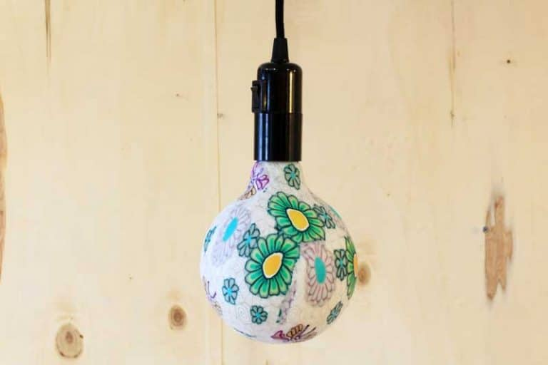 Ampoules Flower Power LED.